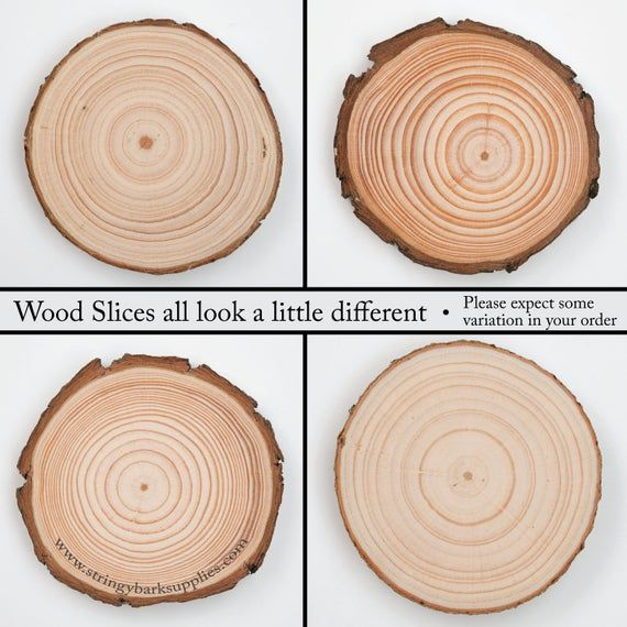 20 Wood Slices 6 8 Cm Rustic Wood Rounds 3 Inch Wood Slices Wood Slice Christmas Ornaments Blank Wood Slices For Crafts Wood Slices Rustic Wood Wood Circles