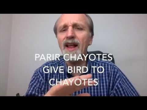 Desintoxicacion con chayotes