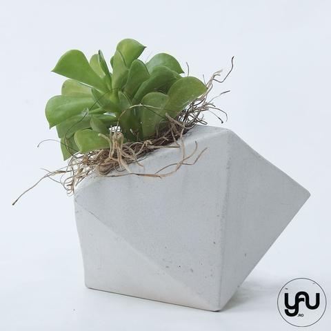Marturii plante suculente in suport turnat GEOMETRIC- M37 - https://www.yau.ro/collections/marturii-nunta-si-botez?page=1 - yauconcept - elenatoader