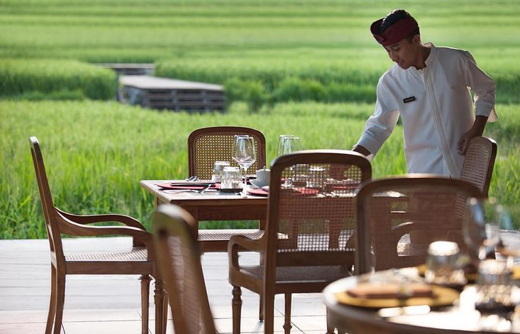 Are you ready for dining experience in the middle of nature?
