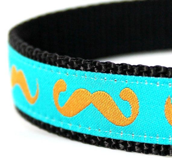 Adorable Mustache Dog Collar with a gold mustache with a teal blue background. This adjustable ribbon dog collar is so cute with ribbon from Germany. It is placed on black heavyweight webbing. If you purchase a XS collar, it will be made on 5/8 webbing. ------------------------------------------- **Collar pictured is a 3/4 inch. Example of the varying widths in last picture. **Production Time is 7 to 10 days. My sizes are as follows and please allow 2 fingers of extra room around yo...