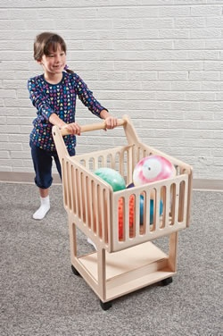 Weighted Shopping Cart