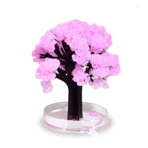 Sakura Die Japanische Kirschblte Gibt Es Jetzt Auch Fr Den Schreibtisch Oder Das Wohnzimmer