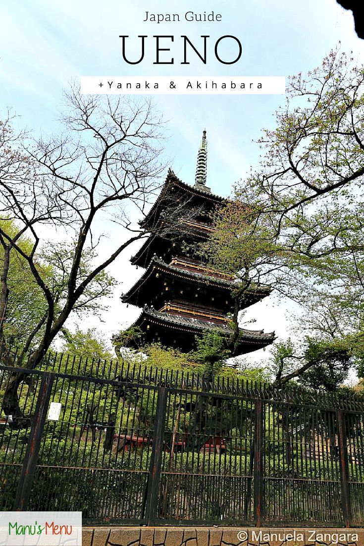 #Tokyo #Ueno guide - tips and suggestions for your next visit! #Japan