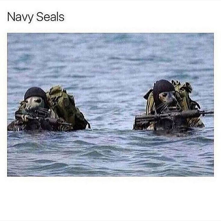 Navy Seal Girlfriend Does Porn
