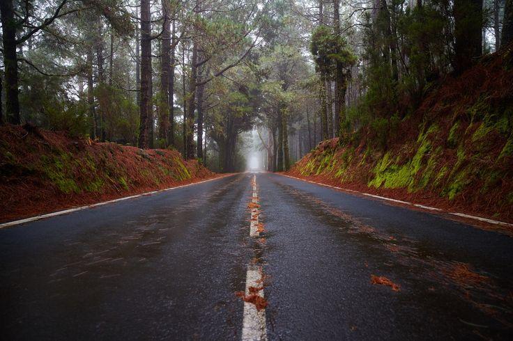 Road by Krzysztof Gurszyński on 500px
