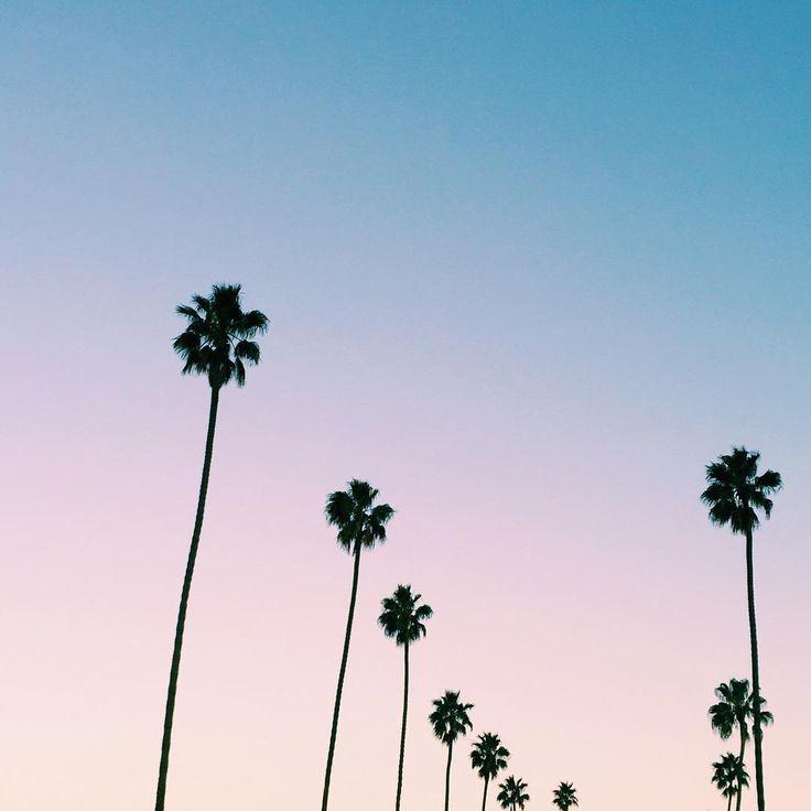 LA cotton candy skies... TAKE ME THERE #beachdreams