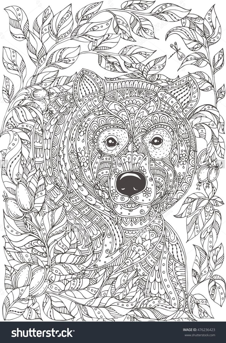 12 best ours images on pinterest drawings mandalas and