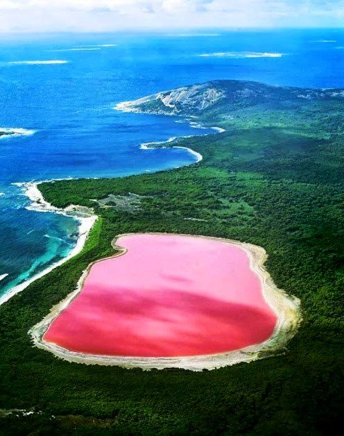 Hiliier lake - Western australia. The pink and lovely Hillier Lake is the only vividly pink lake you will find in the world. The color is permanent and never changes, even when water is removed and placed in a separate container. Its startling color remains a mystery and while scientists have proven it's not due to the presence of algae, unlike the other salt lakes down under, they still can't explain why it's pink... It's always PINK!