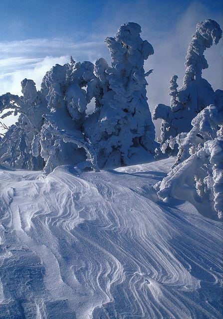 Winter in Poland (Babia Góra National Park)