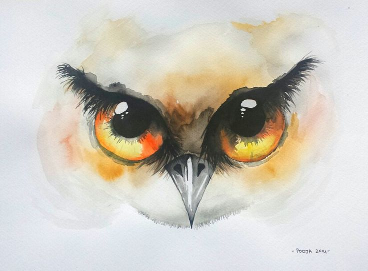 Owl Eyes II, watercolor