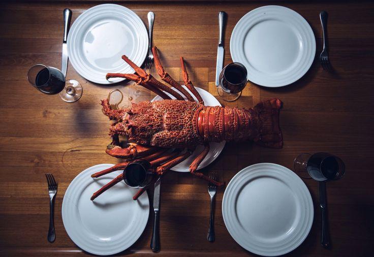 Crayfish, New Zealand. Styled food photography.