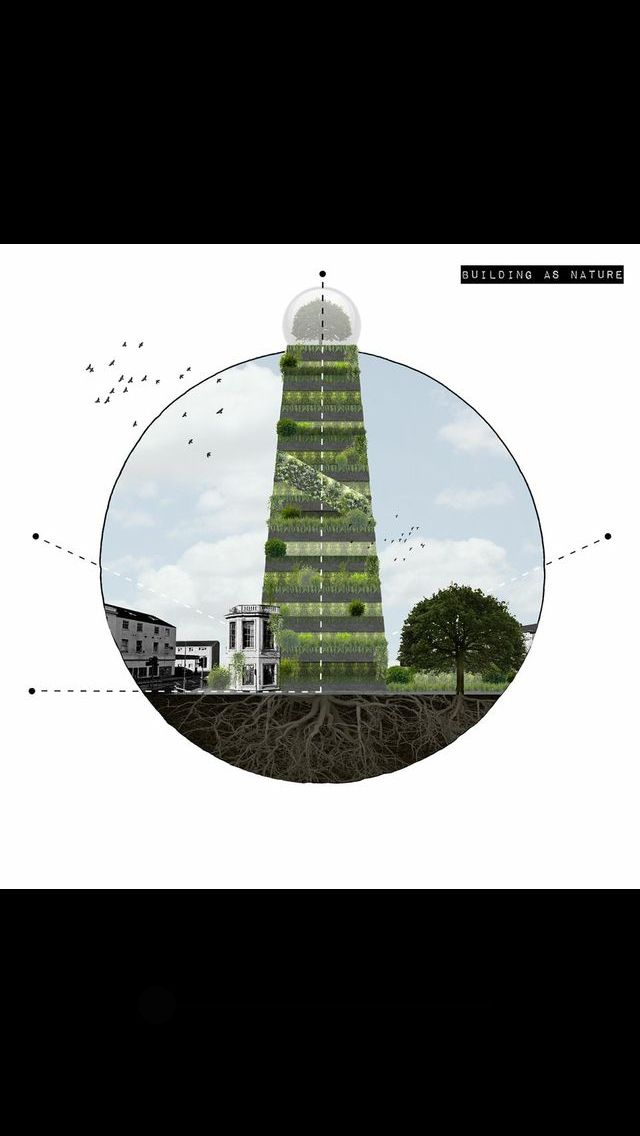 Building as nature