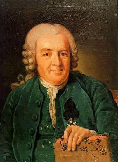 Per Krafft the Elder(1724–1793). Portrait of Carl von Linné (Carolus Linnaeus)Date1774Mediumoil on canvasDimensions69.5 × 54 cm (27.4 × 21.3 in)Current locationThe University of Uppsala Art Collections