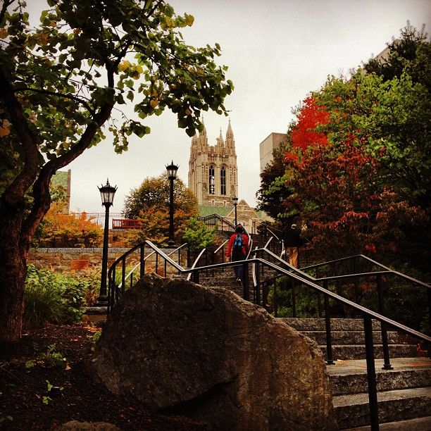Fall colors on campus, Boston College -Boston, MA