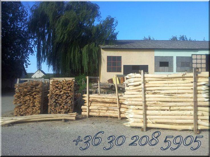 Holzpfähle aus Robinien