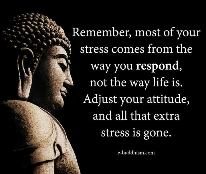 716 Best Buddhist Philosophy Inspirational Quotes Images: Best 25+ Buddhist Philosophy Ideas On Pinterest