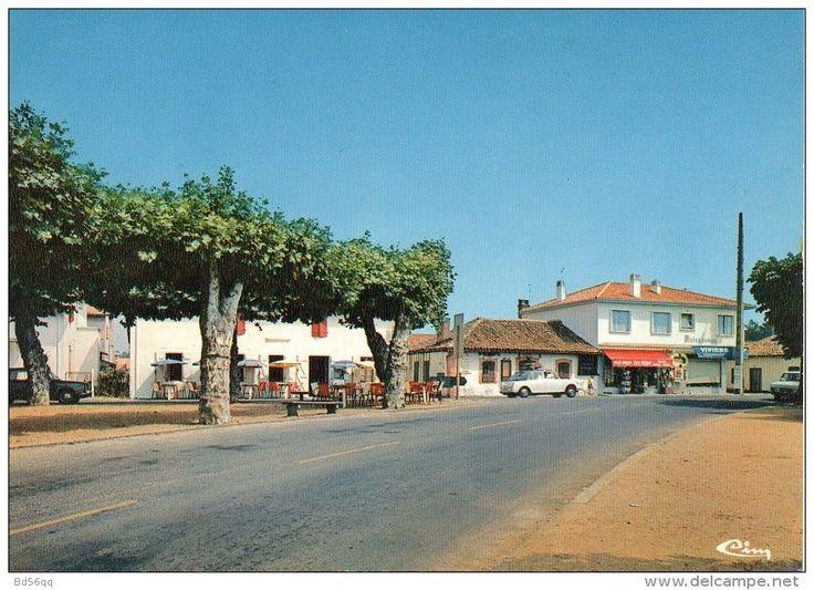 Landes    ---    Vieux Boucau