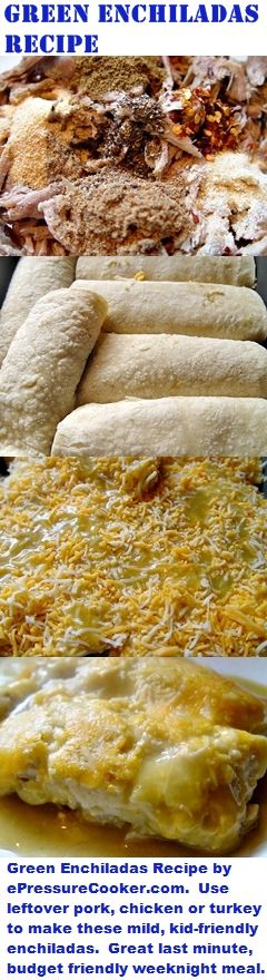 Mexican Recipes: Green Enchiladas Recipe by ePressureCooker.com . Use leftover pork, chicken or turkey to make these mild, kid-friendly enchiladas. Makes a great last minute, budget friendly main dish, even on weeknights or proportions can be scaled up to prepare a large quantity of enchiladas for a Cinco de Mayo party. I also include shopping tips for getting good prices on the ingredients.
