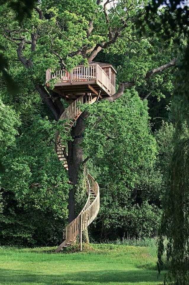 Tree house anyone? View tree houses of different shapes and sizes in this album here: theownerbuilderne... Is building a tree house on your backyard project list?