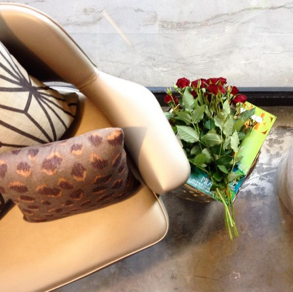 Romantic roses, feline cushion and luxe lighting because its Friday. Shine bright with love and enjoy the weekend! ScX
