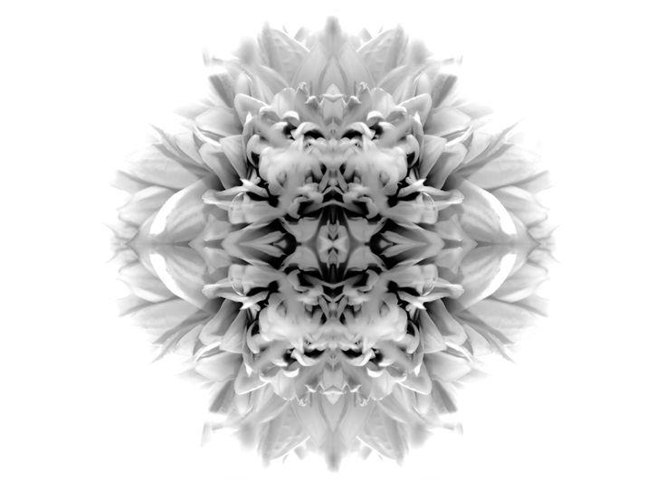 The Bliss. Art by Adida Fallen Angel