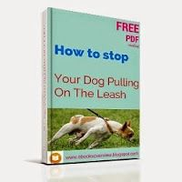 Teach Your Dog to Stop Pulling on the Leash. Here are my tips on how to walk your dog, stay in control, and make sure you have the right dog collar and leash.