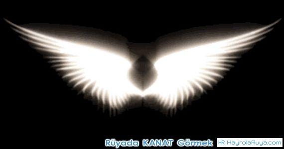 Rüyada Kanat Görmek rüyada kanatsız uçmak rüyada kanatlı karınca görmek rüyada kanatlı insan görmek rüyada kanatlanıp uçtuğunu görmek rüyada kanat yemek rüyada kanatlı böcek görmek rüyada kanatlı siyah at görmek rüyada kanatla uçmak rüyada kanat sesi duymak rüyada kanat çırpmak