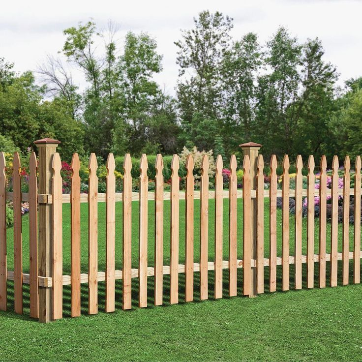 Incense Cedar French Gothic Fence Panel Common 3 1 2 Ft