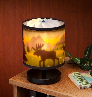 Perfect and sooo cute for Nicolas' Hunting theme for his bedroom $29.99