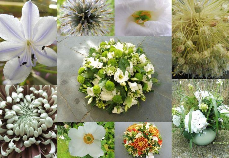 Collage van bloemen en bloemwerk zomer 2016