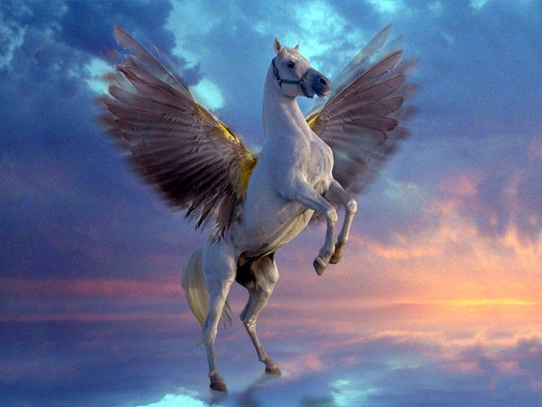 pegahorse: Pegasus, Except, Middle Age, Desktop Wallpapers, Mythical Creatures, Finals Fantasy, Greek Mythology, Unicorns, Fantasy Creatures