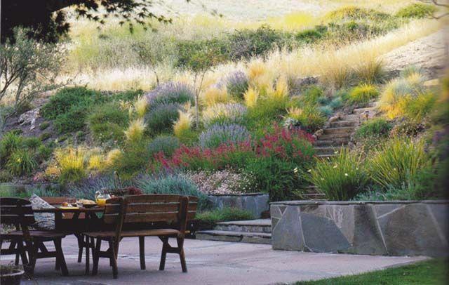 Ornamental Grasses For Slopes Google Search Diy Backyard Landscaping Backyard Landscaping Ornamental Grass Landscape
