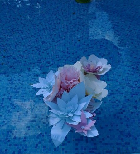 Плавающие композиции в бассейне .