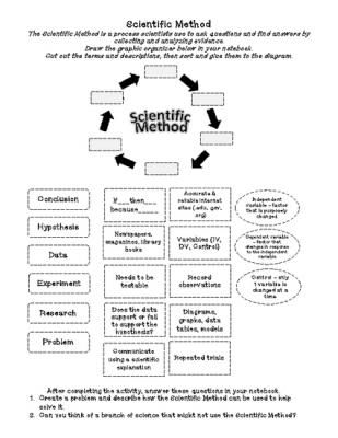 Steps of the Scientific Method (cut & paste) Activity from Sandy's Science Stuff on TeachersNotebook.com - (2 pages) - This is a cut and paste activity. Students cut out the steps and descriptions of the Scientific Method then sort them on a graphic organizer. Follow-up questions are included. Use this activity as part of an interactive notebook with Scientific Method Cor