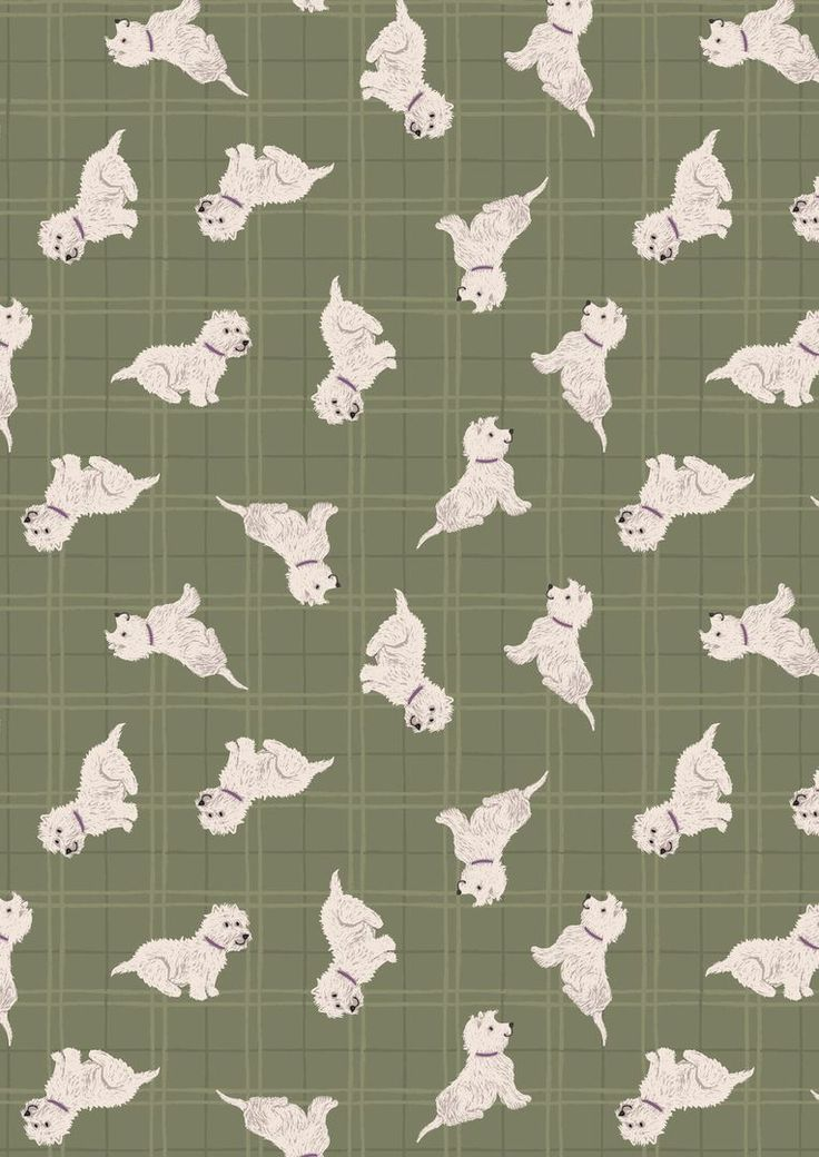 A159.3 Tumbled westies on olive check from a Walk in the Glen