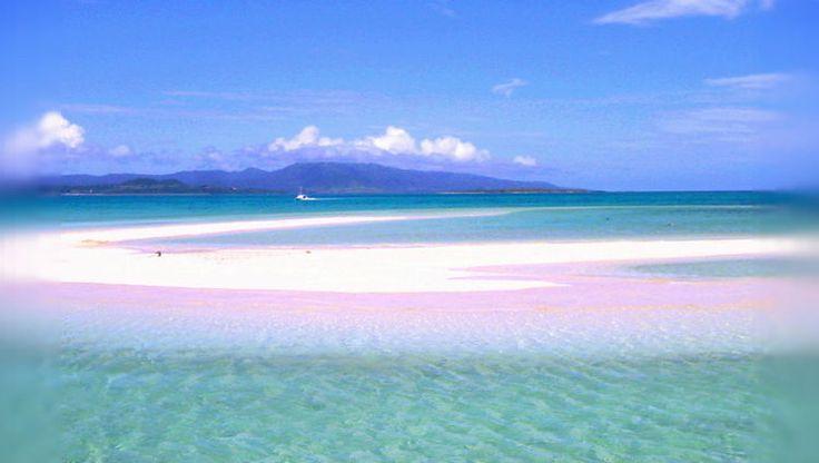 石垣島より船で約30分。小浜島と竹富島の間にある砂浜でできた浜島は、潮の満ち引きで現れたり隠れたりすることから「幻の島」と呼ばれています。潮の干満の影響を受けるので、行く時々によって景色が変わり、小浜島と竹富島の間にある白い砂浜は、干潮時のみ姿を現し満潮時には海中に沈むため幻の島と言われるそうです。1.浜島とは?石垣島からボートで約30分の場所です。小浜島と竹富島の中間に位置する定期船のない...