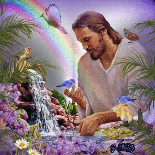 Proyecto Conciencia Solar, segunda meditación mensual: El proceso de la Tierra y los Cetáceos      Canalización del Maestro Jesús  ...