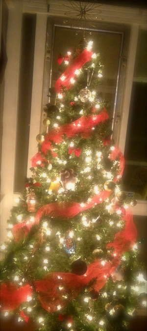 On pinterest tulle fabric christmas trees and christmas chalkboard