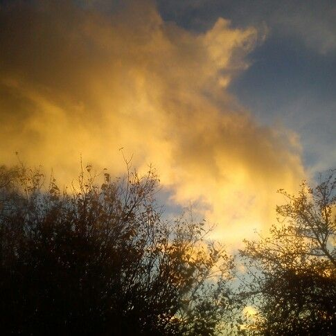 Yellow sunset cloud..