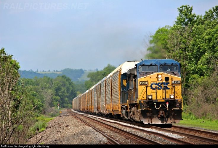 RailPictures.Net Photo: CSXT 231 CSX Transportation (CSXT) GE AC4400CW at St Johnsville, New York by Mike Young