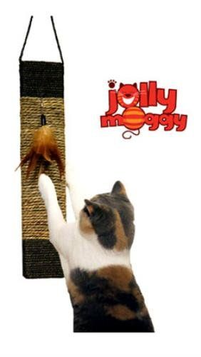 Rosewood Jolly Moggy Wild Catnip Toy Scratch and Play Catnip Scratch Post