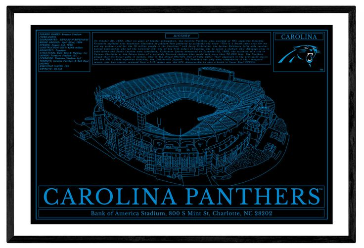 Unique NFL Stadium Blueprint Wall Art - Carolina Panthers Bank of America Stadium