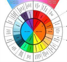 La roue des émotions, d'après Robert Plutchik , psychologue de l'université de Floride.