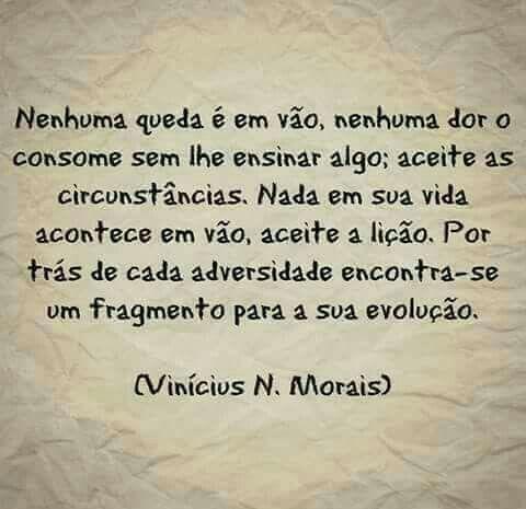 Vinícius N. Morais