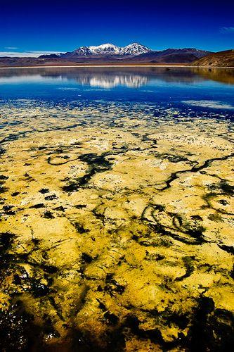 Parque Nacional Nevado Tres Cruces (Chile). En este foto otra toma de la Laguna Santa Rosa, de colores maravillosos y texturas increibles.