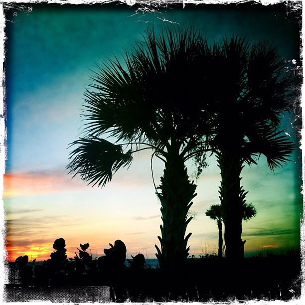 176 best images about Englewood, Florida on Pinterest ...