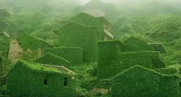 Nearly every building in this abandoned Chinese fishing village is overgrown with ivy and other lush vegetation.