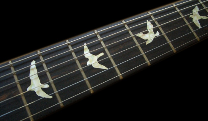 Birds (WS) Fret Markers Inlay Sticker Guitar