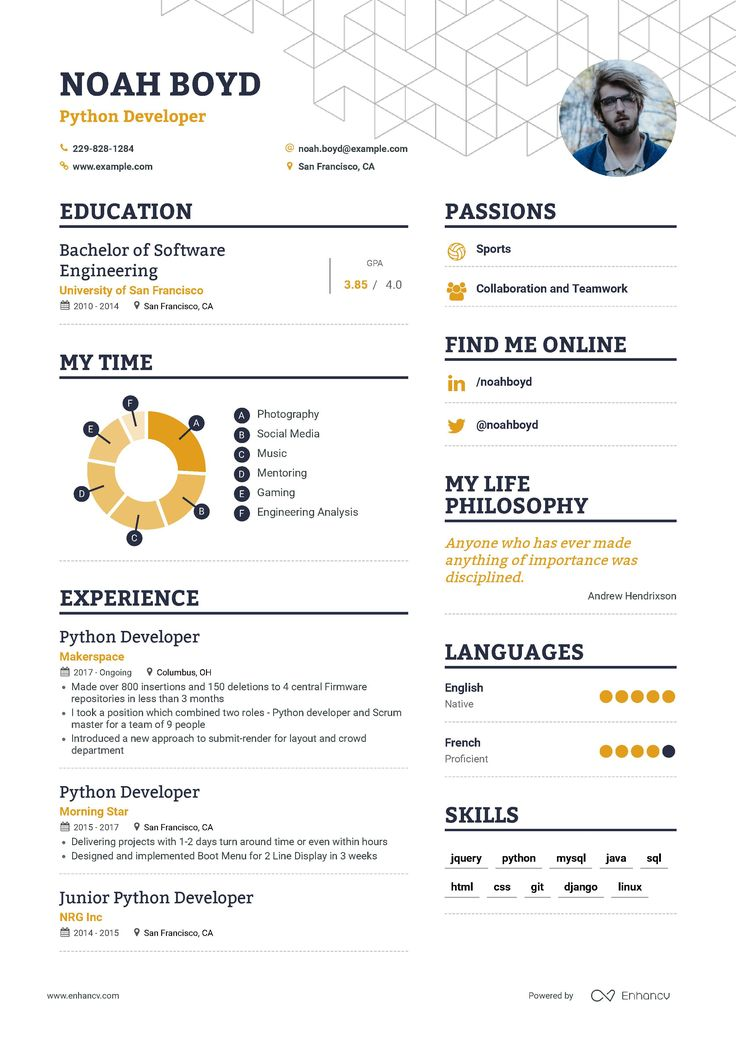 22++ Net developer resume for 5 year experience inspirations